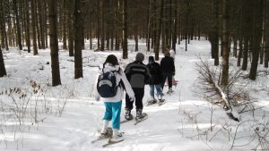 Snowshoes and Snow-Clues @ Cold Creek Conservation Area, Visitor Centre
