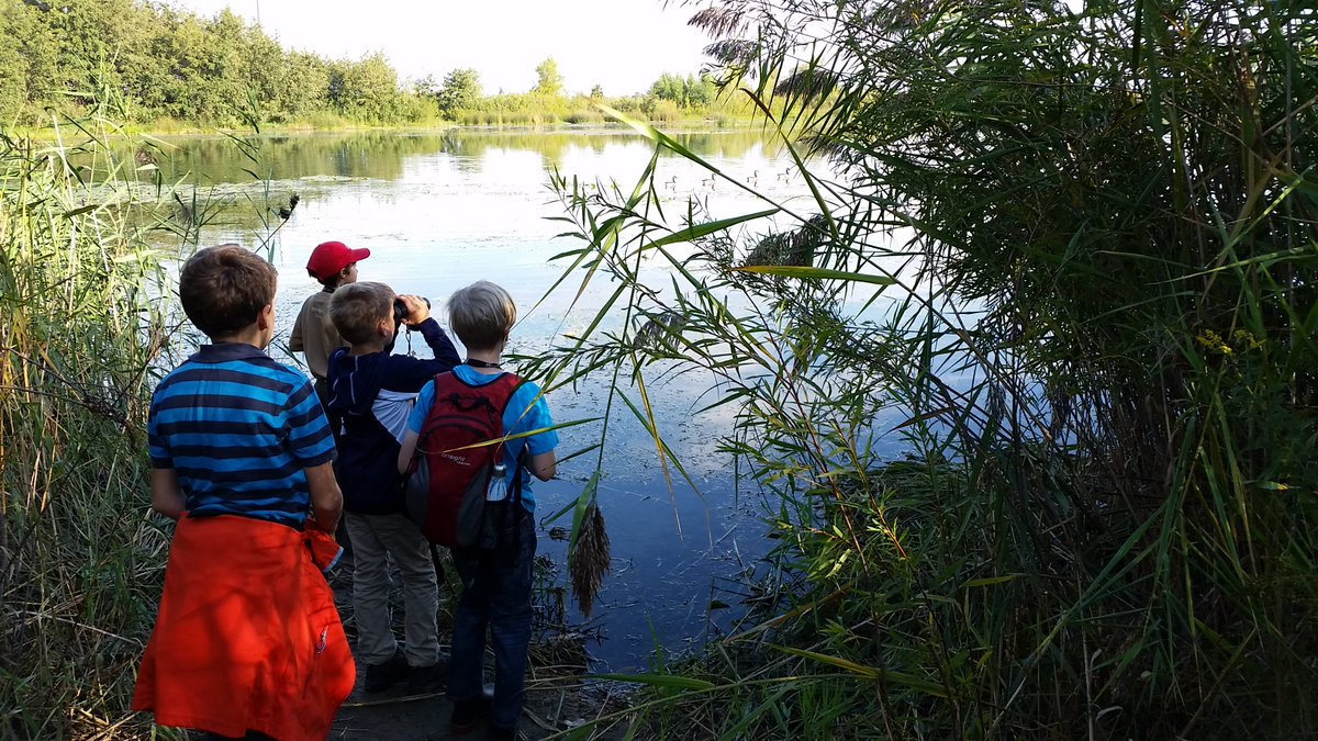 summer nature camp at Tommy Thompson Park
