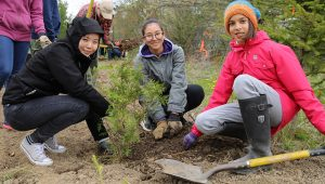 Youth Week Tree Planting at Tasca Park @ Tasca Park Trails