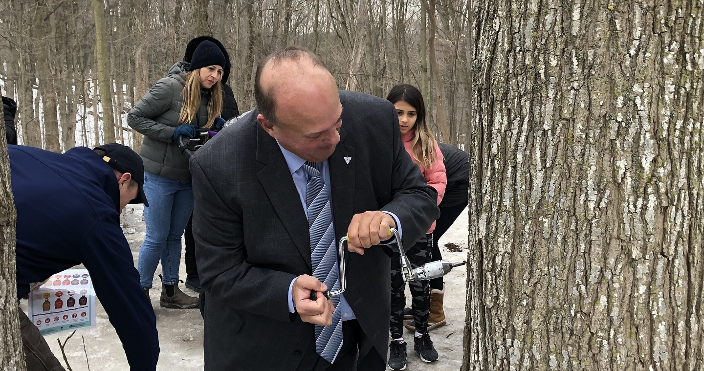 Minister Michael Tibollo taps a tree during visit to the Sugarbush Maple Syrup Festival at Kortright