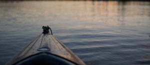 Sunset Paddle @ Lake St. George Field Centre