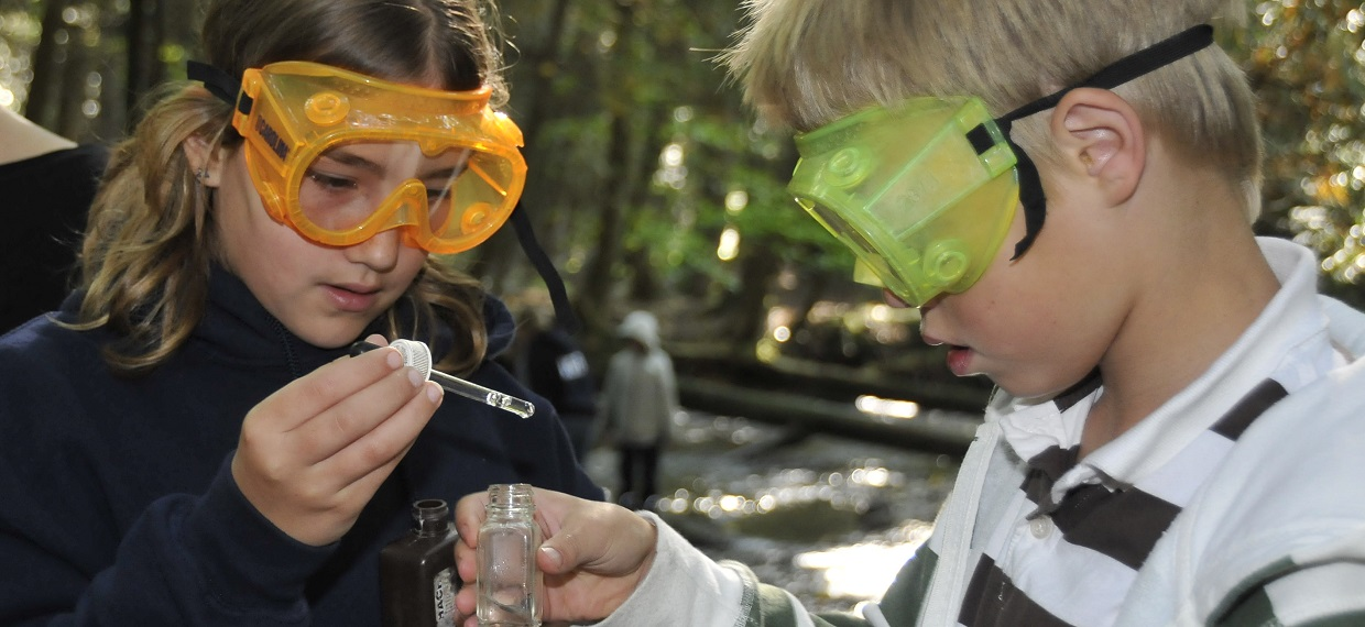 students conduct water study during field trip to Claremont Nature Centre
