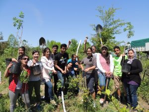 Conservation Youth Corps: Norton Place Park @ Norton Place Park