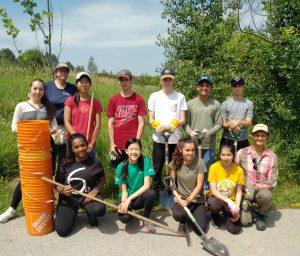 Youth Volunteer Event: Tree Maintenance at Oak Ridges @ Oak Ridges Community Centre