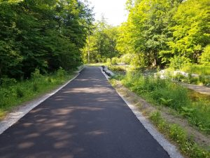 Newly paved trail within Wilket Creek Park. Click to enlarge.
