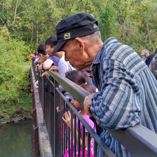 attendees watch from bridge at Highland Creek Salmon Festival