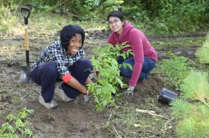 Greening TO Grounds with Girls Can Too @ Revera Forest Hill Place