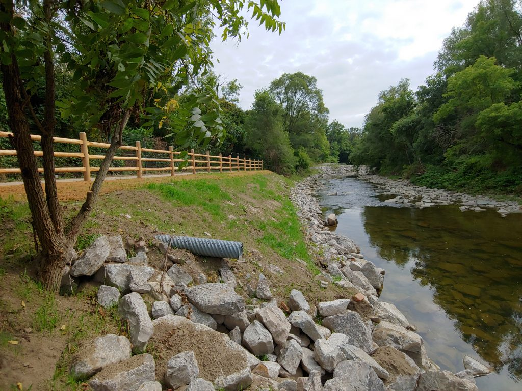Completed vegetated buttress with post-and-paddle fencing at upstream end of site
