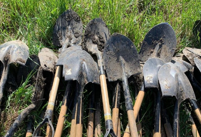 shovels on ground at tree planting event
