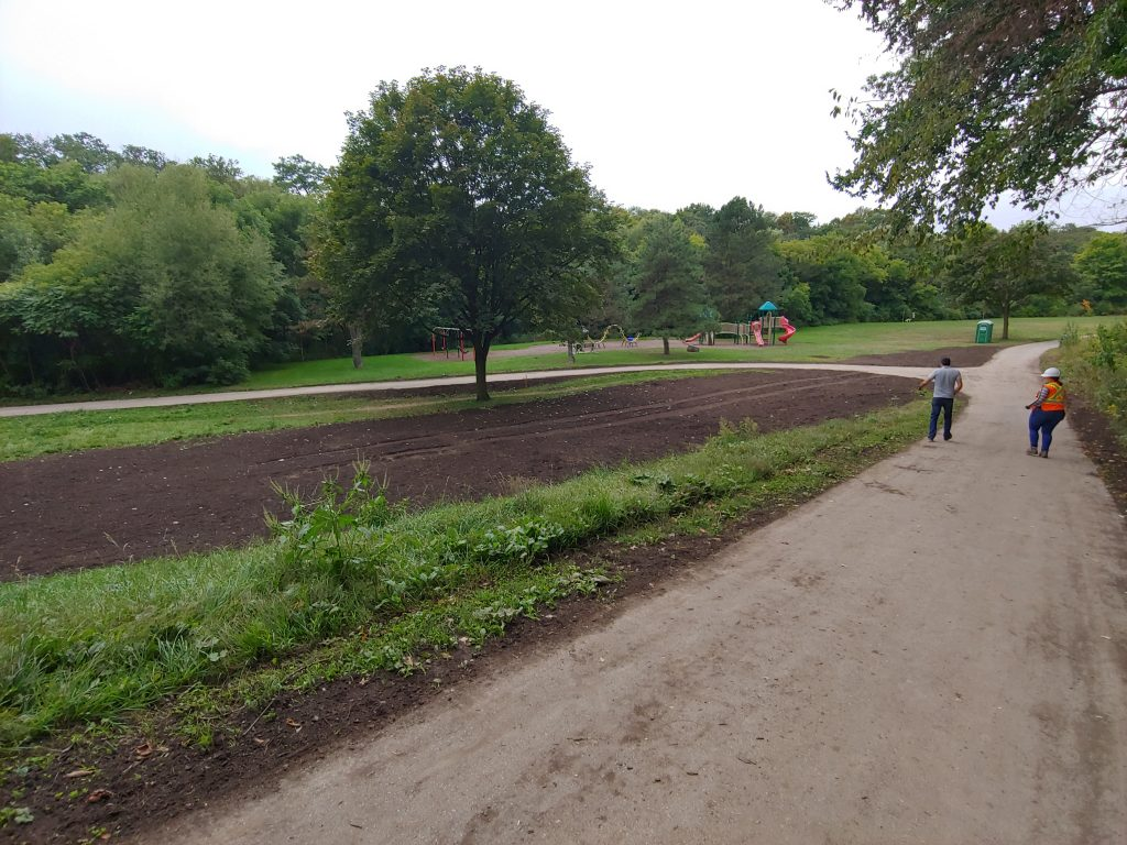 Terraseeded area of Etobicoke Valley Park