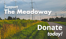SupportThe Meadoway - Donate Today