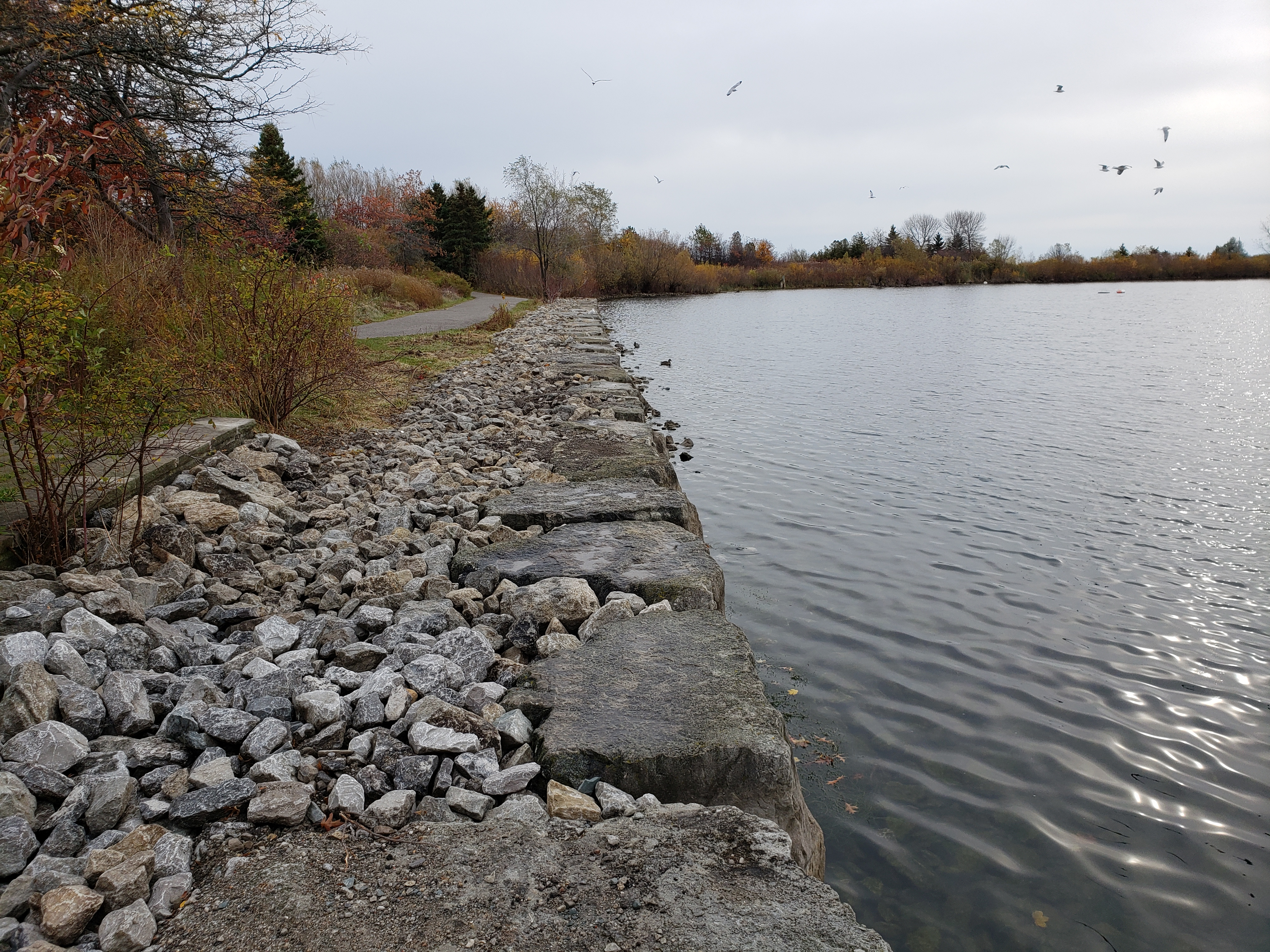 Completed eastern portion of the seawall and resurfaced trail. Source: TRCA, 2019.