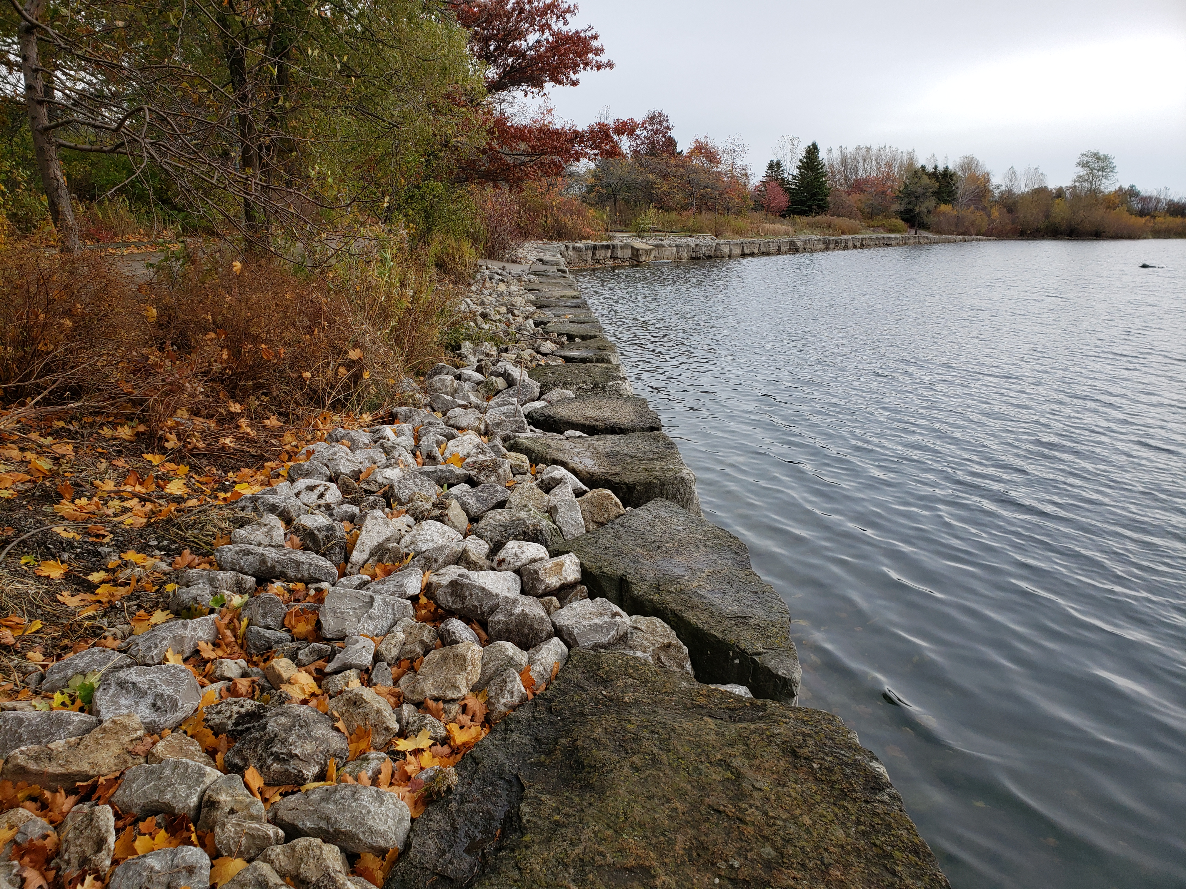 Completed western portion of the seawall within the marina. Source: TRCA, 2019.