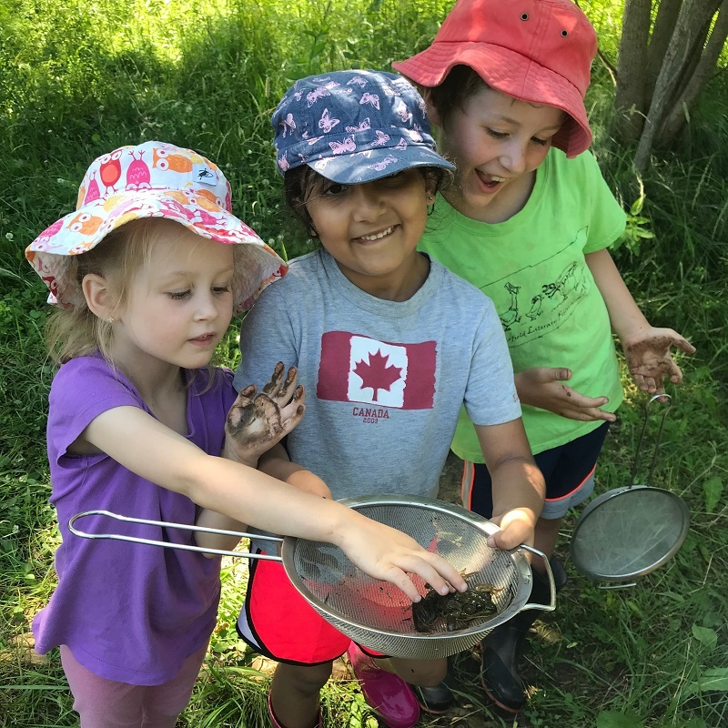 campers discover aquatic wildlife at Lake St George summer nature camp