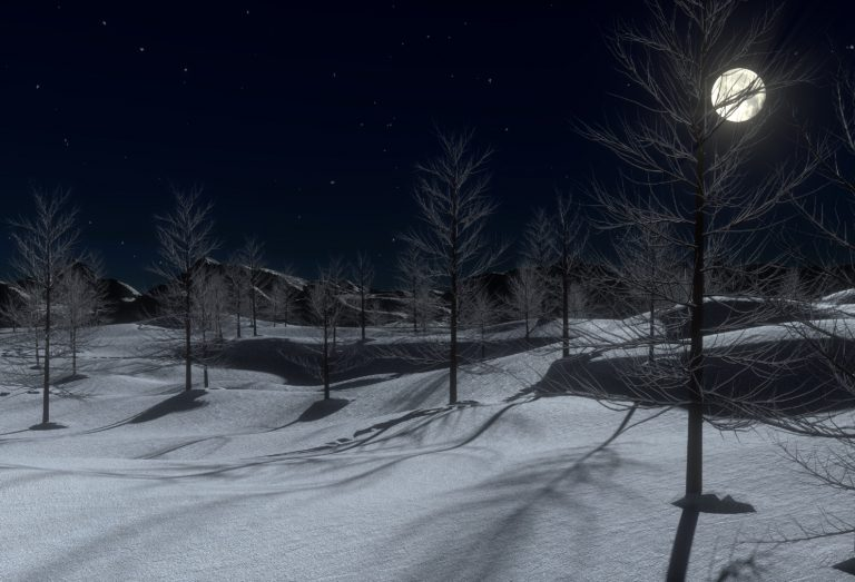 Moonlight across a snow and winter landscape