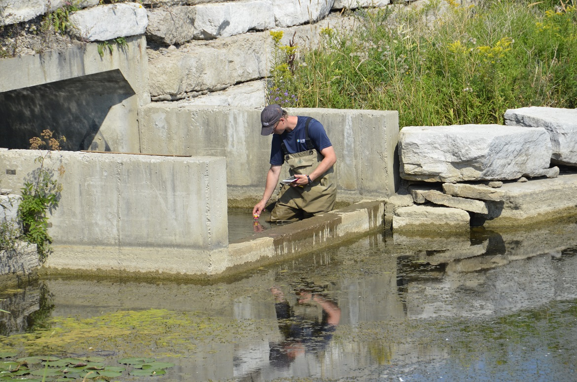 TRCA staff member assesses an anthropogenic barrier