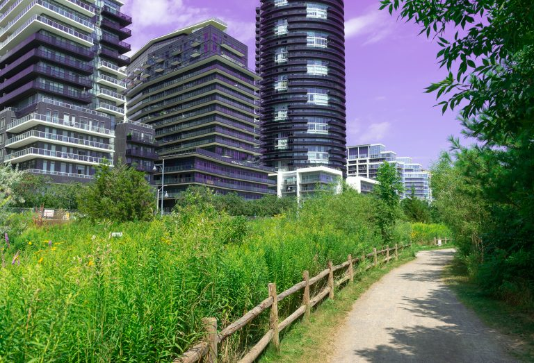 Green space and trail next to modern buildings near the Humber Bay Park in Etobicoke, Ontario, Canada