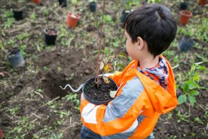 Postponed: Community Planting @ Bolton Camp