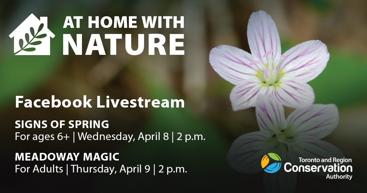 TRCA at home with nature livestream schedule