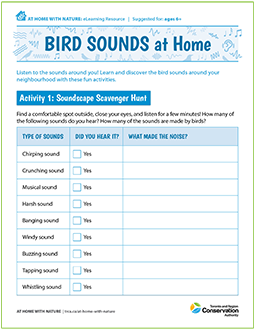 cover page of Bird Sounds e-learning resource