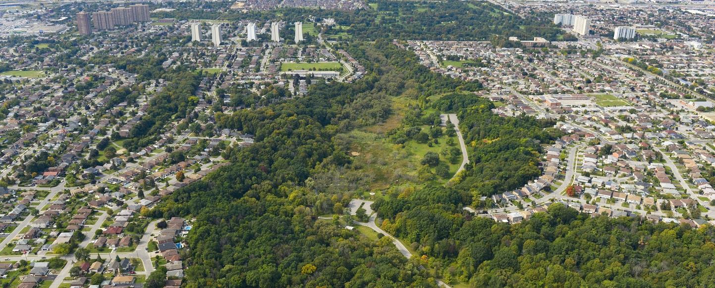 aerial view of Rockcliffe-Smythe neighbourhood in vicinity of Black Creek Dam