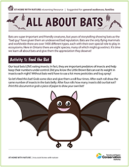 cover page of TRCA All About Bats e-learning resource