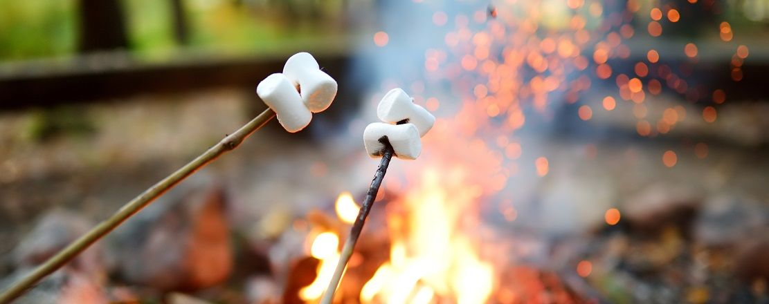 marshmallows being toasted over a campfire