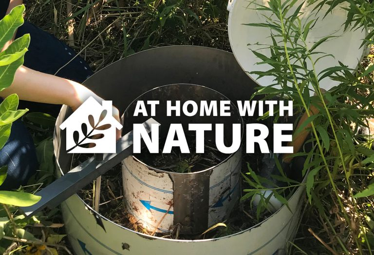 At Home With Nature - Research in The Meadoway