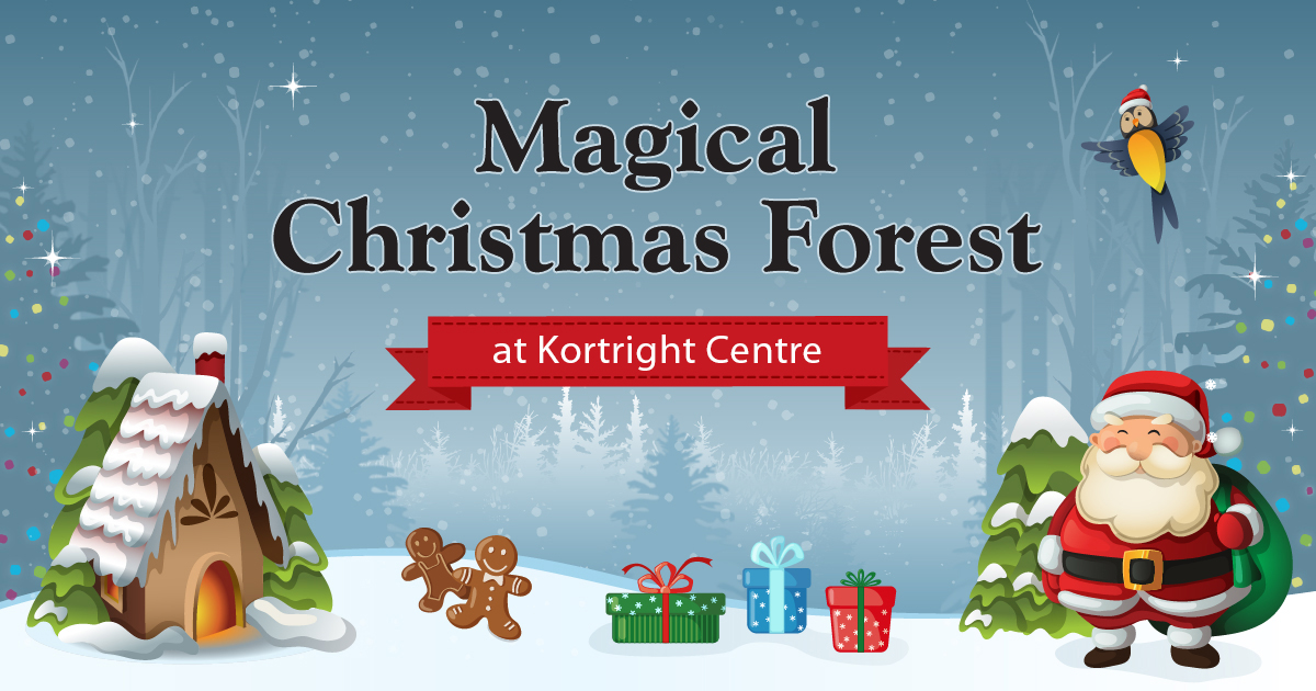 Magical Christmas Forest at Kortright