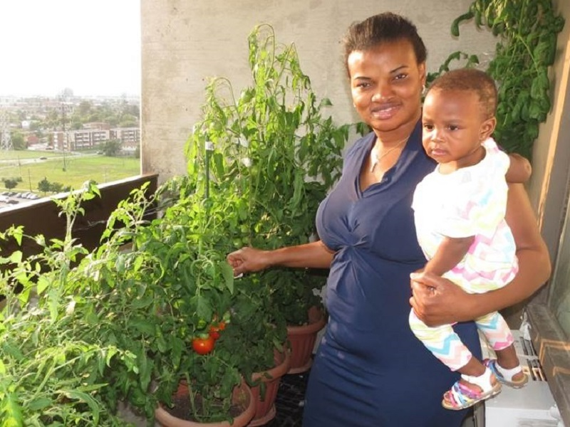resident takes part in balcony gardening program at San Romanoway Towers