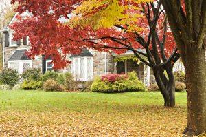 Winterize Your Lawn and Garden @ Online Webinar