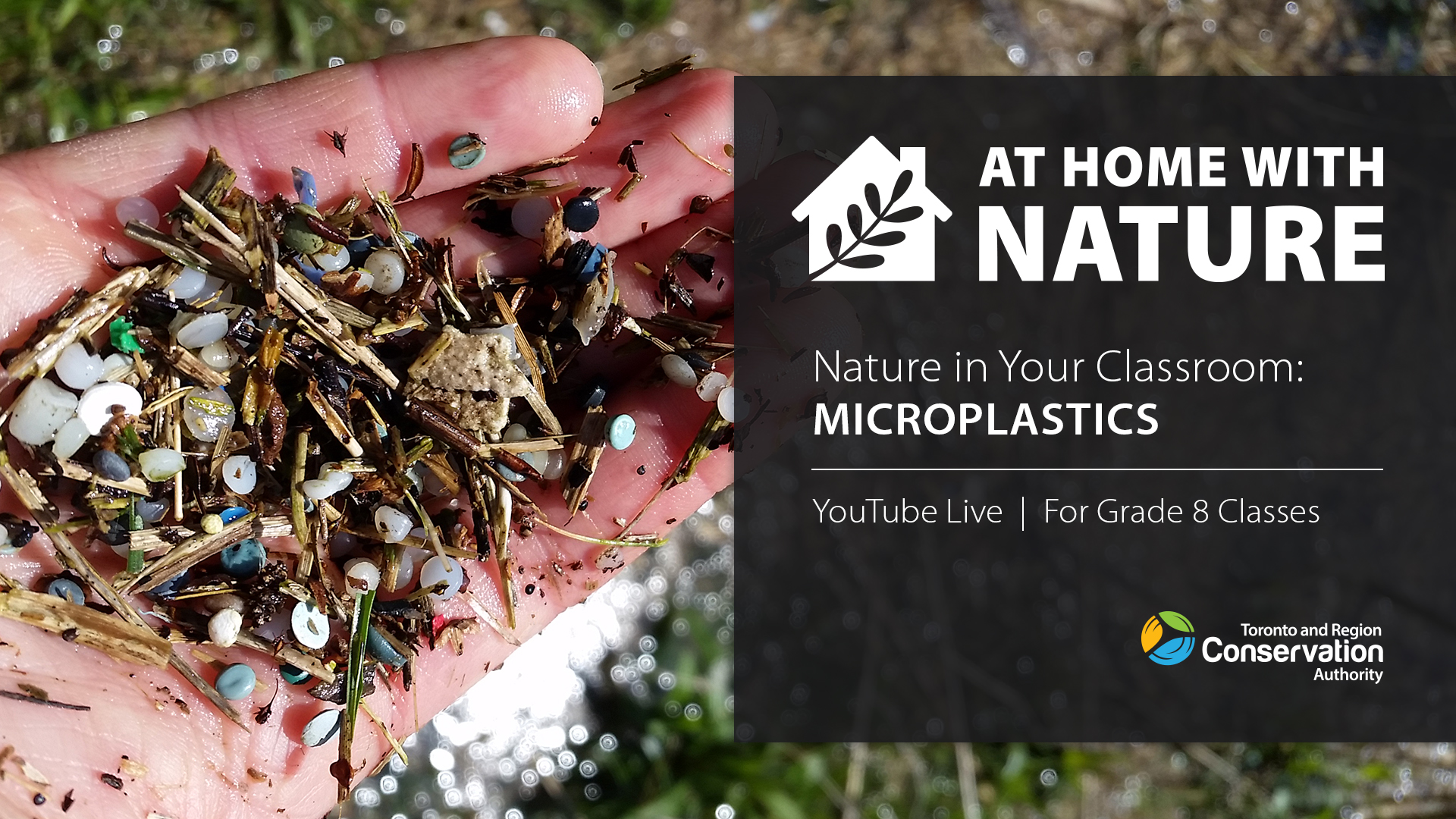 Nature in Your Classroom - Microplastics
