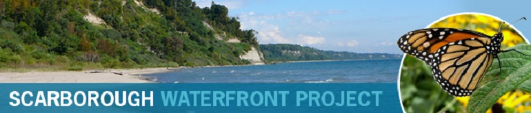 Scarborough Waterfront Project Newsletter