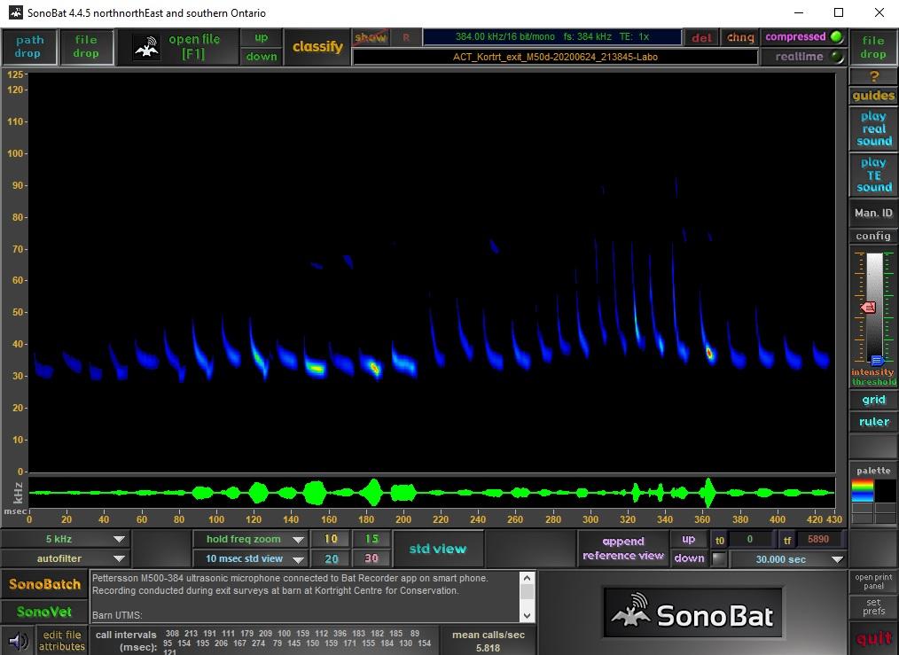 sonogram displays call signature of eastern red bat