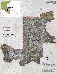 Rexdale Community Planning Workshop @ Online webinar