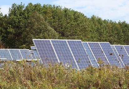 solar panels in field at Kortright Centre for Conservation