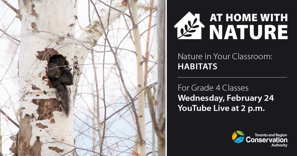 At Home With Nature - Habitats