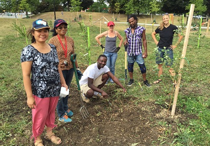 San Romanoway Towers residents participate in Black Creek SNAP orchard stewardship project