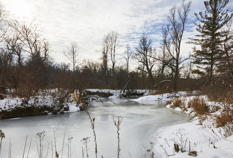 frozen stream at Kortright Centre for Conservation