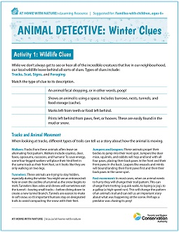 Animal Detective - Winter Clues - At Home with Nature worksheet