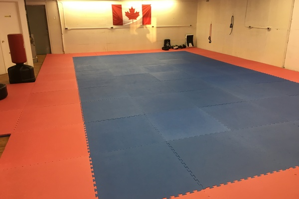 Martial Arts club with foam puzzle mats
